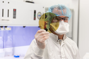 A scientist at SK Siltron CSS holds a silicon carbide wafer produced at the company's Michigan facility.