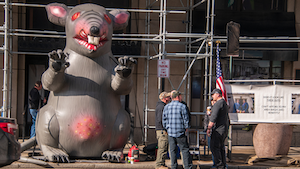 Scabby The Rat 611bc932d8a6d