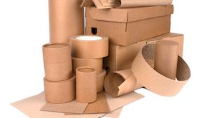 Sustainable Packaging Iryna Mylinska 61072c13639c1