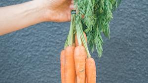 Carrot 1 611c36bc95682